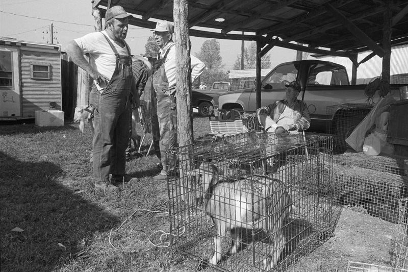 Bargaining for a Goat, Ripley, Mississippi, 1999