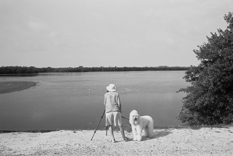 Bird Watchers, Sanibel Island, Florida, 2010
